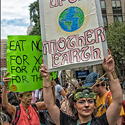 Ahimsa (in the Hindu, Buddhist, and Jain tradition) the principle of nonviolence toward all living things.<br /> <br /> <br /> Supporters turned out in droves in support of the Animal Rights March. Numerous organizations and speakers also shared inspiring messages in support of animal rights. Campaigners called the march &ldquo;a consolidated global effort to make the vegan voice heard.&rdquo; It&rsquo;s estimated that in New York City alone, roughly 2,300 people took to the streets.<br /> <br /> Animals are mutilated, confined to tiny cages, and violently slaughtered so that humans can eat them; electrocuted, strangled, and skinned alive so that humans can parade around in their coats; burned, blinded, poisoned, and cut up alive in laboratories; enslaved, beaten, and kept in chains to make them perform tricks for humans&rsquo; amusement; and worse.<br /> <br /> Stand in Solidarity With Animals Every Day by Going Vegan
