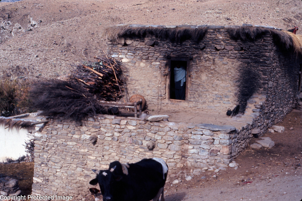 2-4 December 1976<br />