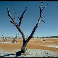 NSW Austrralia
