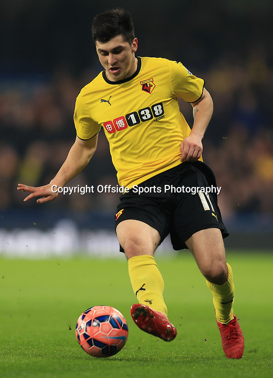 4 January 2015 - The FA Cup 3rd Round - Chelsea v Watford - Fernando Forestieri of Watford - Photo: Marc Atkins / Offside.