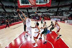 Sasu Salin (10) of Olimpija vs Nihad Djedovic (14) of Lottomatica during Euroleague Top 16 basketball match between Lottomatica Virtus Roma (ITA) and KK Union Olimpija Ljubljana (SLO) in Group F, on January 20, 2011 in Arena PalaLottomatica, Rome, Italy. Olimpija defeated Lottomatica 64 - 63. (Photo By Vid Ponikvar / Sportida.com)