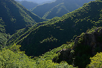Deven area, Western Rhodope mountains, Bulgaria