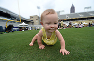 August 1, 2013 - Atlanta: Violet Stafford, 10 months, crawls on turf on Grant Field during Georgia Tech Fan Day at Bobby Dodd Stadium on Saturday, August 8, 2013. Her mother said that she took her first steps on Grant Field today ©2013 Johnny Crawford
