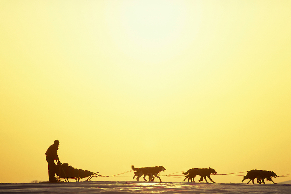 USA, Alaska, Musher Rick Mackey races past setting sun out of Koyuk during 1993 Iditarod sled dog race.