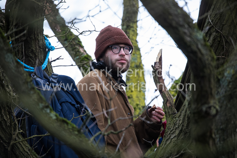 Harefield, UK. 8 February, 2020. An environmental activist from Extinction Rebellion occupies a veteran oak tree in order to try to prevent HS2 engineers from carrying out tree felling works for the high-speed rail project. The activists were successful in preventing any of the scheduled tree felling by HS2 and after an intervention by a police officer all tree felling and strimming work has now been cancelled for the weekend.