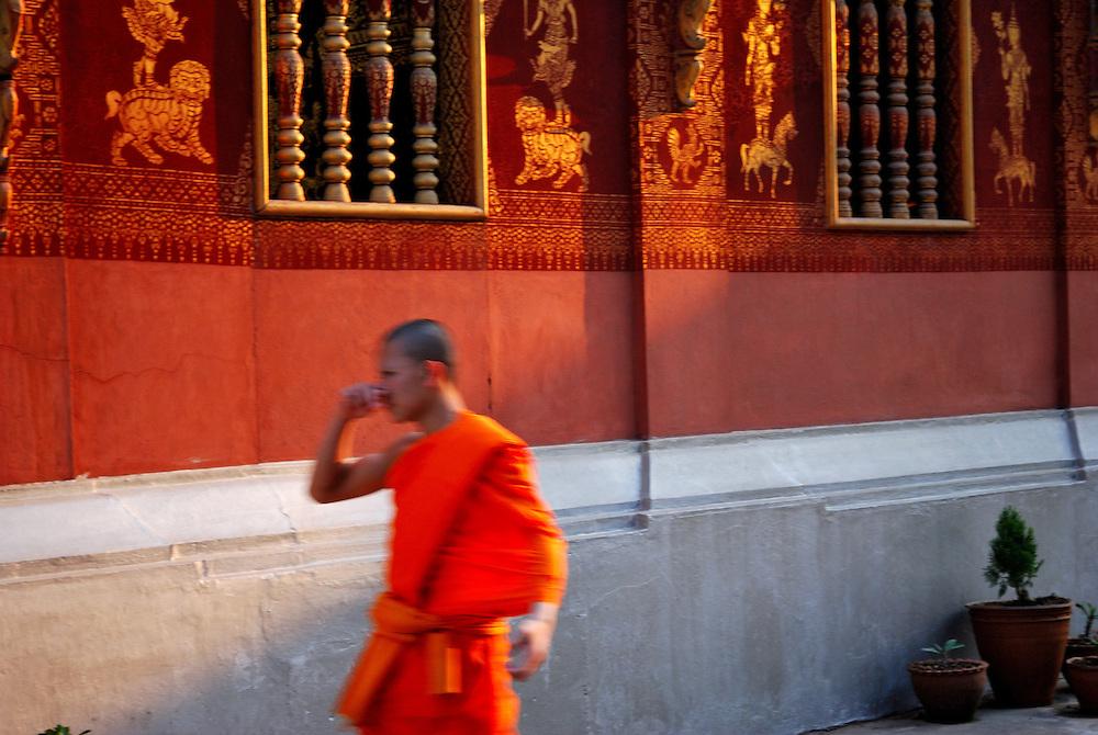 Novice monks on his way to evening prayer