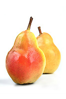 Pears on white background - close-up