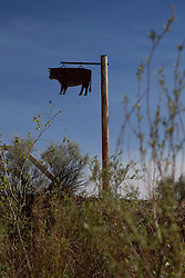 metal cow sign on a pole in New Mexico