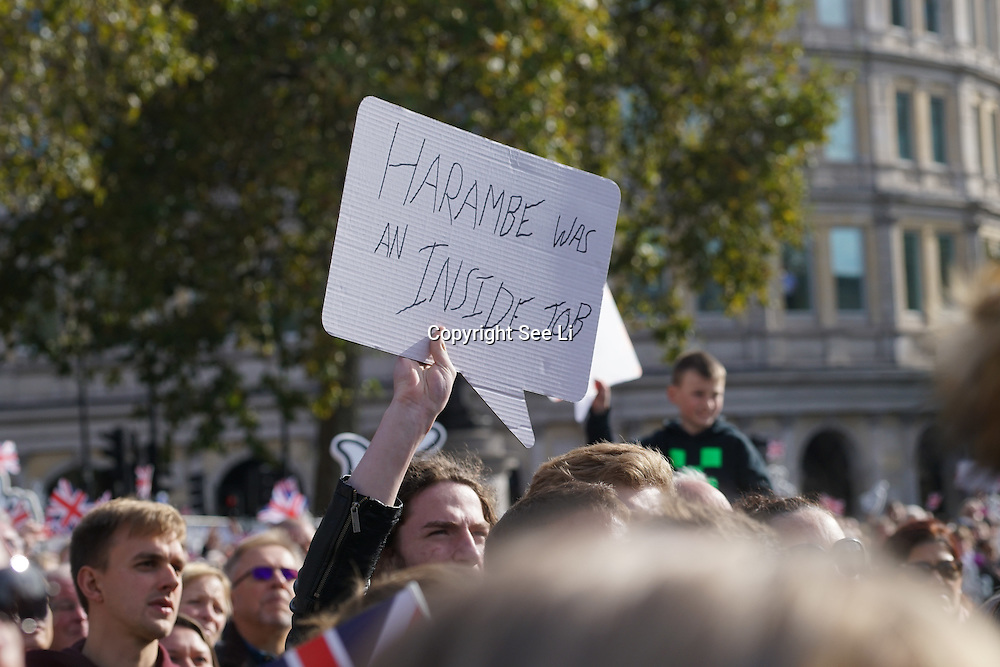 London, England,UK. 17th Oct 2016: Thousands attend the Olympic Parade London Live celebrations to welcome our heroes home in Trafalgar Square, London,UK. photo by See Li