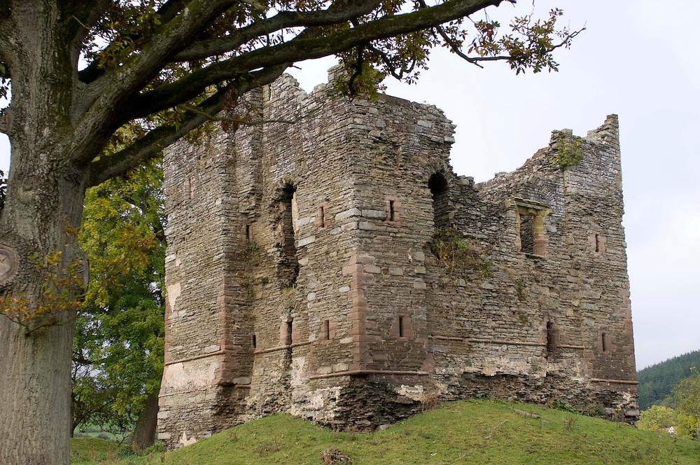 Ruins of Hopton Castle, Shropshire