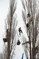 © Licensed to London News Pictures.  15/03/2015. Bristol, UK.  Specialist climbers from SGI Rescue remove protesters from trees on land owned by Bristol City Council. Campaigners are protesting against the Bristol Metrobus proposed bus-only bridge and junction on the M32 which will be on existing allotments and land which is grade one agricultural quality soil, and which the campaigners say should be preserved for growing food, especially as this year Bristol is the Green Capital of Europe 2015.  The Metrobus project is designed to save journey times and encourage more commuters out of cars and onto buses.  The protesters have been camped and in tree houses for 6 weeks.  Photo credit : Simon Chapman/LNP