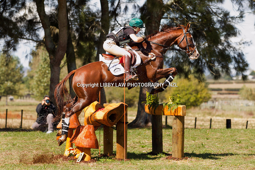 NZL-Christen Hayde (KAKARIKI) Kihikihi International Horse Trial: CIC2* CROSS COUNTRY: ELIMINATED - bad fall at the second water fence.  Taken away by the Westpac Rescue Helicopter due to the rough terrain with a suspected fractured hip (Saturday 6 April 2013)