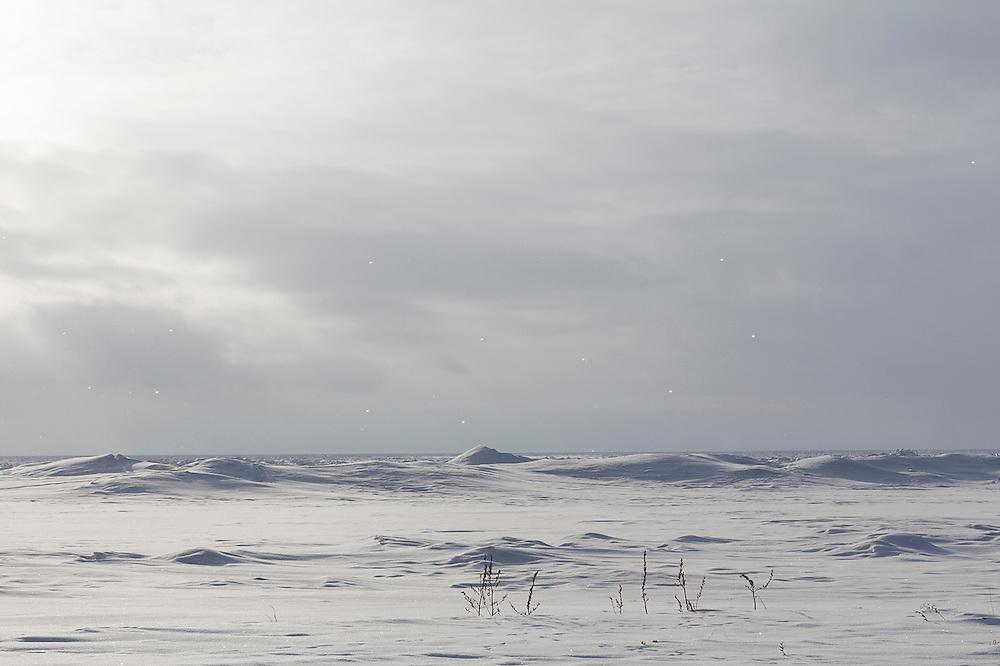 Frozen Lake Huron in February