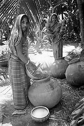 BANGLADESH BARISAL DISTRICT KATTAMBARI SEP94 - Hindu women boil rice under palmtrees that shelter them from the harsh sunlight...jre/Photo by Jiri Rezac..© Jiri Rezac 1994