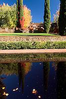Bourn Cottage Garden Pond, Empire Mine State Historic Park, Grass Valley, California