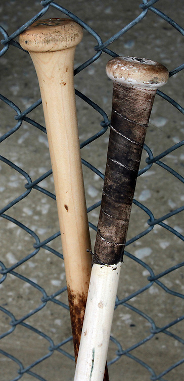 Bats lean against the dugout fence.  photo by David Peterson