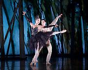 The Birmingham Royal Ballet <br /> Three Short Story Ballets (mixed Bill) <br /> at Birmingham Hippodrome, Birmingham, Great Britain <br /> Rehearsal 21st June 2017 <br /> <br /> Le Baiser de la f&eacute;e <br /> Choreography by Michael Corder<br /> <br /> Music: Igor StravinskyDesigns: John MacfarlaneLighting: Paule Constable<br /> <br /> CastFairy:  C&eacute;line Gittens <br /> <br /> Young Man: <br /> <br /> Mathias Dingman<br /> <br /> <br /> <br /> <br /> <br /> <br /> <br /> <br /> <br /> Photograph by Elliott Franks <br /> Image licensed to Elliott Franks Photography Services