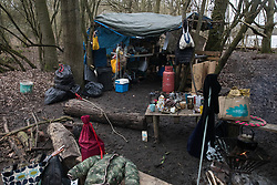 Harefield, UK. 13 January, 2020. A protection camp inhabited by Stop HS2 activists close to Harvil Road. Part of the nearby Colne Valley protection camp was evicted by bailiffs last week. 108 ancient woodlands are set to be destroyed by the high-speed rail link and further destruction of trees for HS2 in the Harvil Road area is believed to be imminent.
