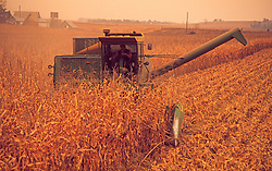 Tractor Plowing Corn Field Agriculture