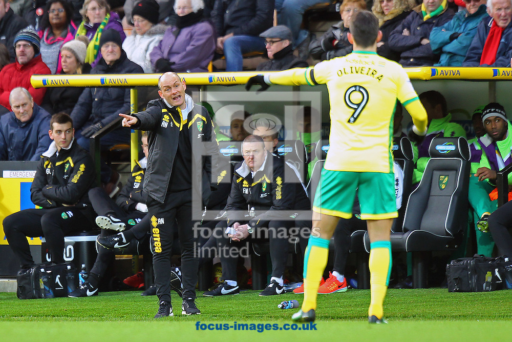 Norwich Manager Alex Neil gives instructions to Nelson Oliveira of Norwich during the Sky Bet Championship match at Carrow Road, Norwich<br /> Picture by Paul Chesterton/Focus Images Ltd +44 7904 640267<br /> 02/01/2017