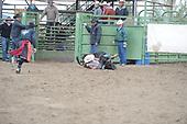 Jr Steer Riding
