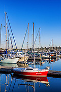 Boats in Squalicum Harbor, Bellingham, Washington State, USA.