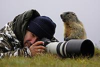 Photographer with marmot (Marmota marmota) (model release 03/08/HTNP), Hohe Tauern National Park, Carinthia, Austria