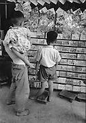 C003-16_Tom Hutchins_Book shop display, Canton suburb, China 1956.tif