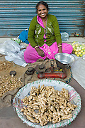 Old Delhi, Daryagang fruit and vegetable market - ginger on sale, India