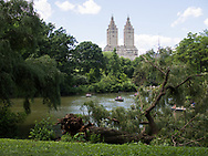 Fallen willow tree at the Lake in Central Park