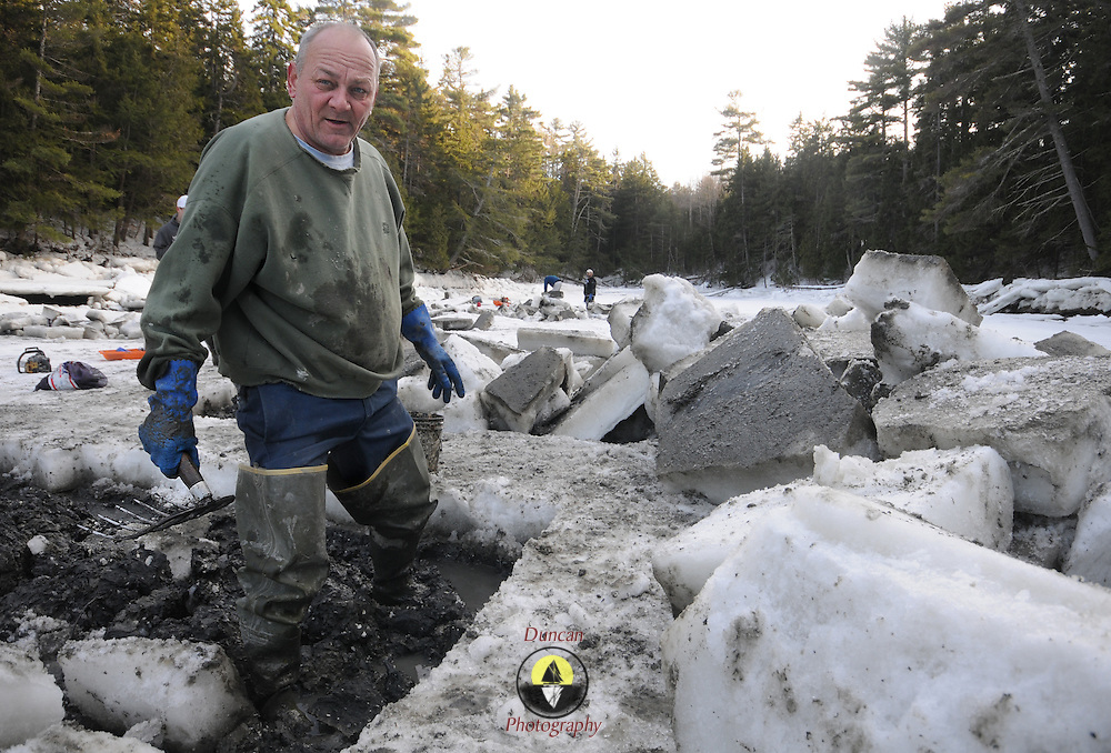 """2/17/11 -- HARPSWELL, Maine. Michael Bernier of Harpswell takes a short break from digging clams in Quahog Bay on Thursday afternoon. He and a small group of diggers cut through the ice at low water with chain saws to dig here. <br /> Quahog Bay was reopened for digging on Feb 11, 2011 after many years of closure, according to Department of Marine Resources Biotoxin Monitoring Manager, Darcie Couture. She wrote, """"This area had been closed for many years due to failing water quality, caused by bacterial pollution. A serious pollution source was recently identified and remediated.  The area will close in June for the summer, because unfortunately, this area, like many others on the Maine coast, suffer from the increased pressure of a seasonal summer population, which negatively impacts water quality, and results in many of our shellfish resources remaining closed to harvest during that time."""" Photo by Roger S. Duncan."""