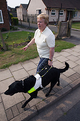 Partially sighted woman out walking with her guide dog,