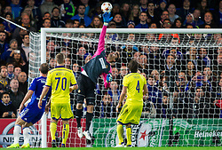 Jasmin Handanovic of Maribor in action during football match between Chelsea FC and NK Maribor, SLO in Group G of Group Stage of UEFA Champions League 2014/15, on October 21, 2014 in Stamford Bridge Stadium, London, Great Britain. Photo by Vid Ponikvar / Sportida.com