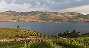 A panoramic view of Benson Vineyards overlooking Lake Chelan, Washington