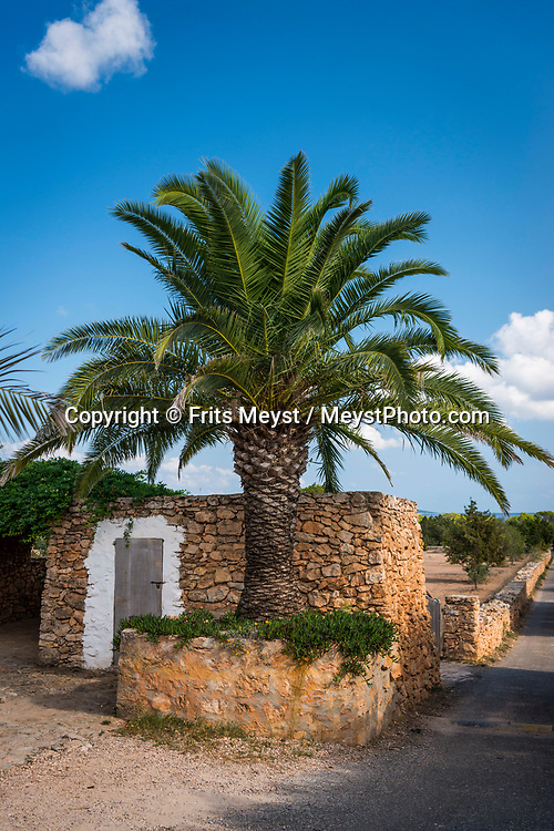 Formentera, Spain, October 2017. Traditional houses of Formentera. Formentera is the smallest of Spain's Balearic islands in the Mediterranean Sea. It's reachable by ferry from its more crowded, better known island neighbor, Ibiza, and makes for a popular day-trip destination in the summertime. It's known for its clear waters and long stretches of beach backed by dunes and pine trees. Pastimes include snorkeling and sailing, with equipment rentals and boat charters available. Photo by Frits Meyst / MeystPhoto.com