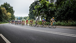Peloton at the Grebbeberg during the Arnhem Veenendaal Classic at Rhenen, Utrecht, The Netherlands, 19 August 2016.Photo by Pim Nijland / PelotonPhotos.com | All Rights Reserved
