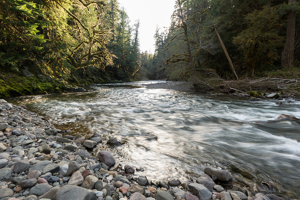 Middle Fork Santiam River, Oregon.