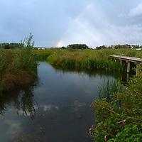 EN&gt; A rainbow rises behind a newly created wetland in an Arnhem neighbourhood |<br /> SP&gt; Un arco iris aparece al fondo de un nuevo humedal en un suburbio de Arnhem