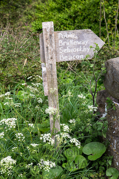 Public Bridleway signpost from Bossington to Selworthy Beacon in Exmoor, Somerset, UK