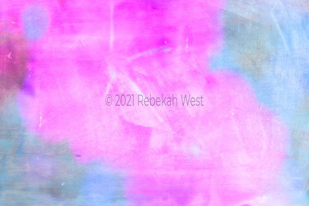 Hot pink five petaled close up flower soft focus second flower down right, horizontal field of soft blue, background wash, flower art, feminine, iridescent, high resolution, licensing, 5616 x 3744