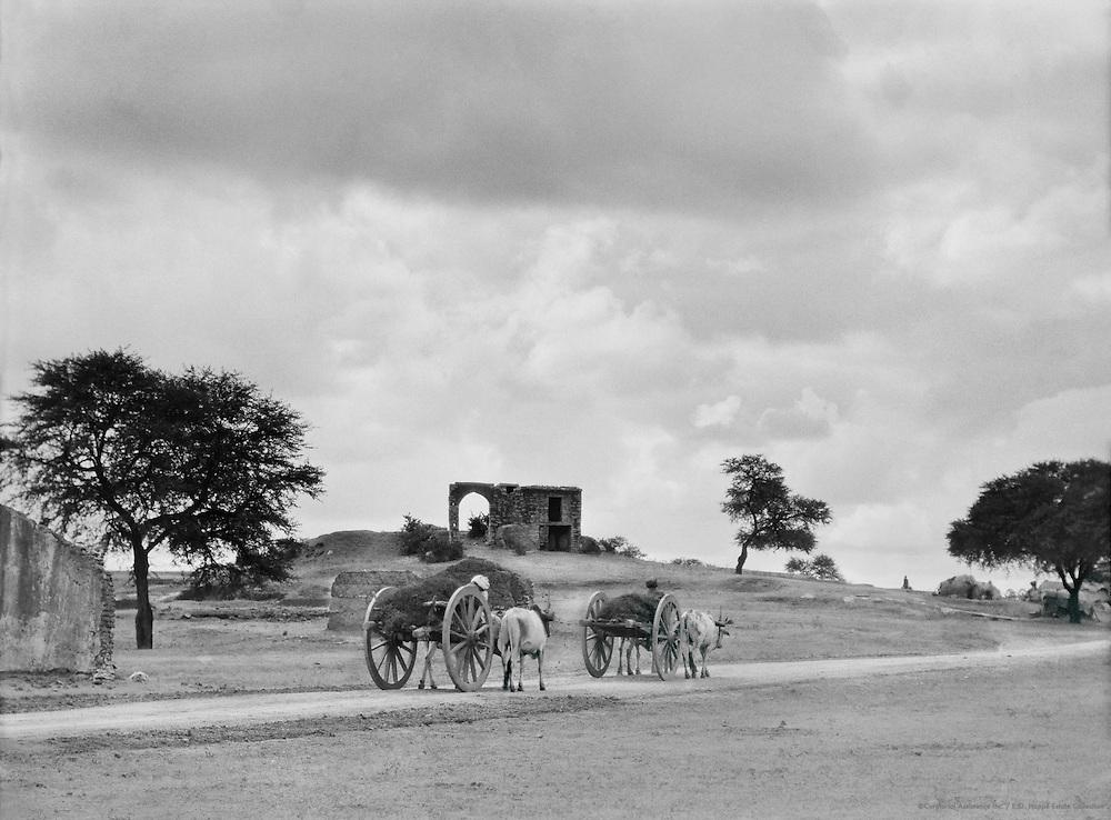Landscape Round Hyderabad, India, 1929