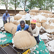 CAPTION: Loading the conveyor belt that takes sacks of raw cotton, as received from the market, to a truck or trailer for weighing and then into the ginnery for processing. LOCATION: Great Lakes Ginnery, Mgabu, Chikwawa, Malawi. INDIVIDUAL(S) PHOTOGRAPHED: Foreground: Juli Jesadi (left) and Richard Chimkango (right).