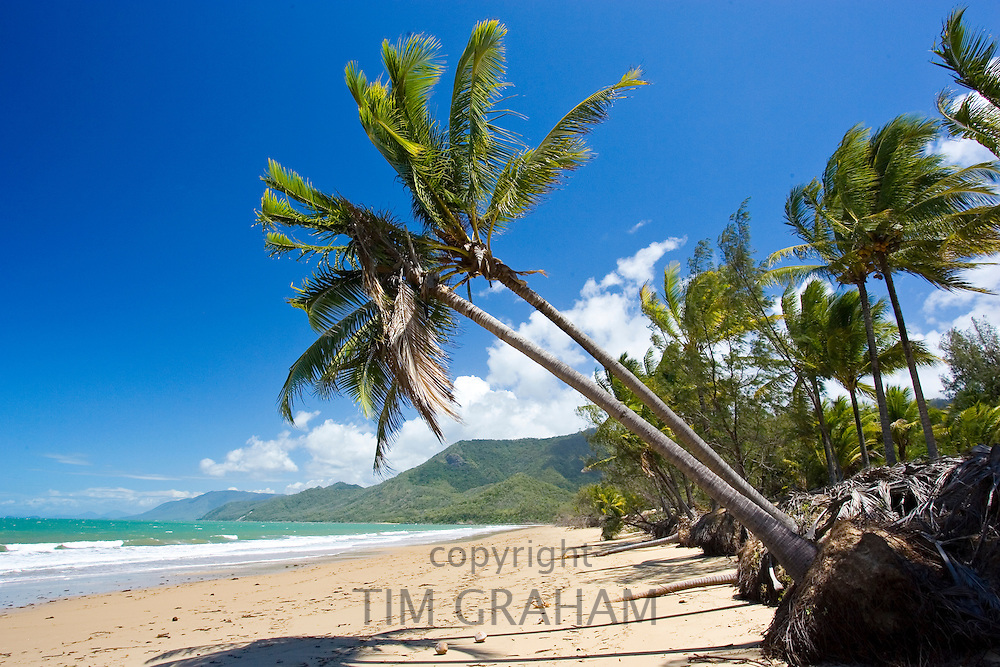 Thala Beach and the Coral Sea, Port Douglas, Australia