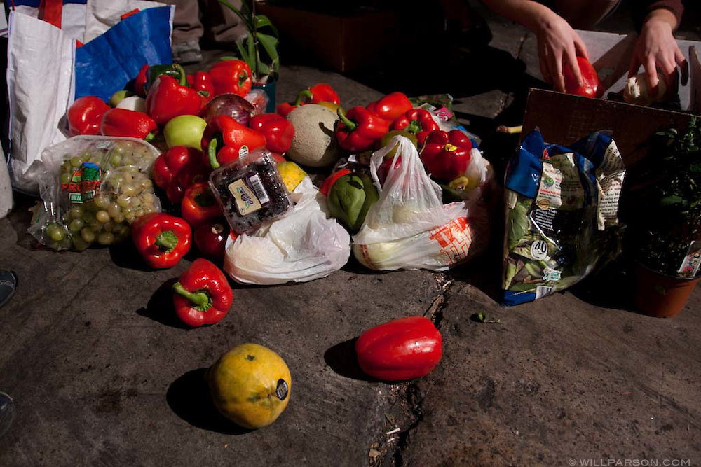Freegans salvage food from a grocery store dumpster in San Diego, California. Freeganism is a movement based on limited participation in the conventional economy and minimal consumption of resources.