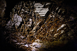 Detailed view of boxwork formations inside Wind Cave, Wind Cave National Park, South Dakota, United States of America