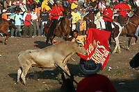 A man confronts a bull in the ring during the annual Corralejas in Sincelejo, Colombia on Saturday, January 19, 2008. The corraleja, a bullfighting ritual in northern Colombia pitting hundreds of amateur matadors, many in advanced stages of inebriation, against a 900-pound bull. Regarded in other parts of Colombia as a bizarre spectacle, the corralejas are passionately defended by people of the northern savannas, an impoverished region. (Photo/Scott Dalton).