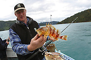 Fishing, Picton, New Zealand<br />