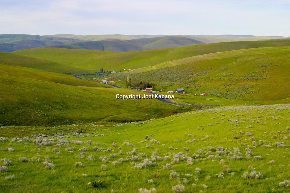 Heppner, Oregon is nestled in softly rolling hills.