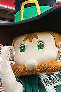 The Plymouth Argyle mascot prior to the Sky Bet League 2 Play-off Final at Wembley Stadium, London<br /> Picture by Matt Wilkinson/Focus Images Ltd 07814 960751<br /> 30/05/2016