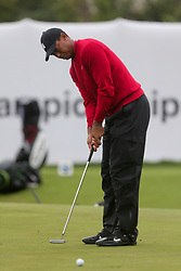 September 10, 2018 - Newtown Square, Pennsylvania, United States - Tiger Woods putts the 17th green during the final round of the 2018 BMW Championship. (Credit Image: © Debby Wong/ZUMA Wire)